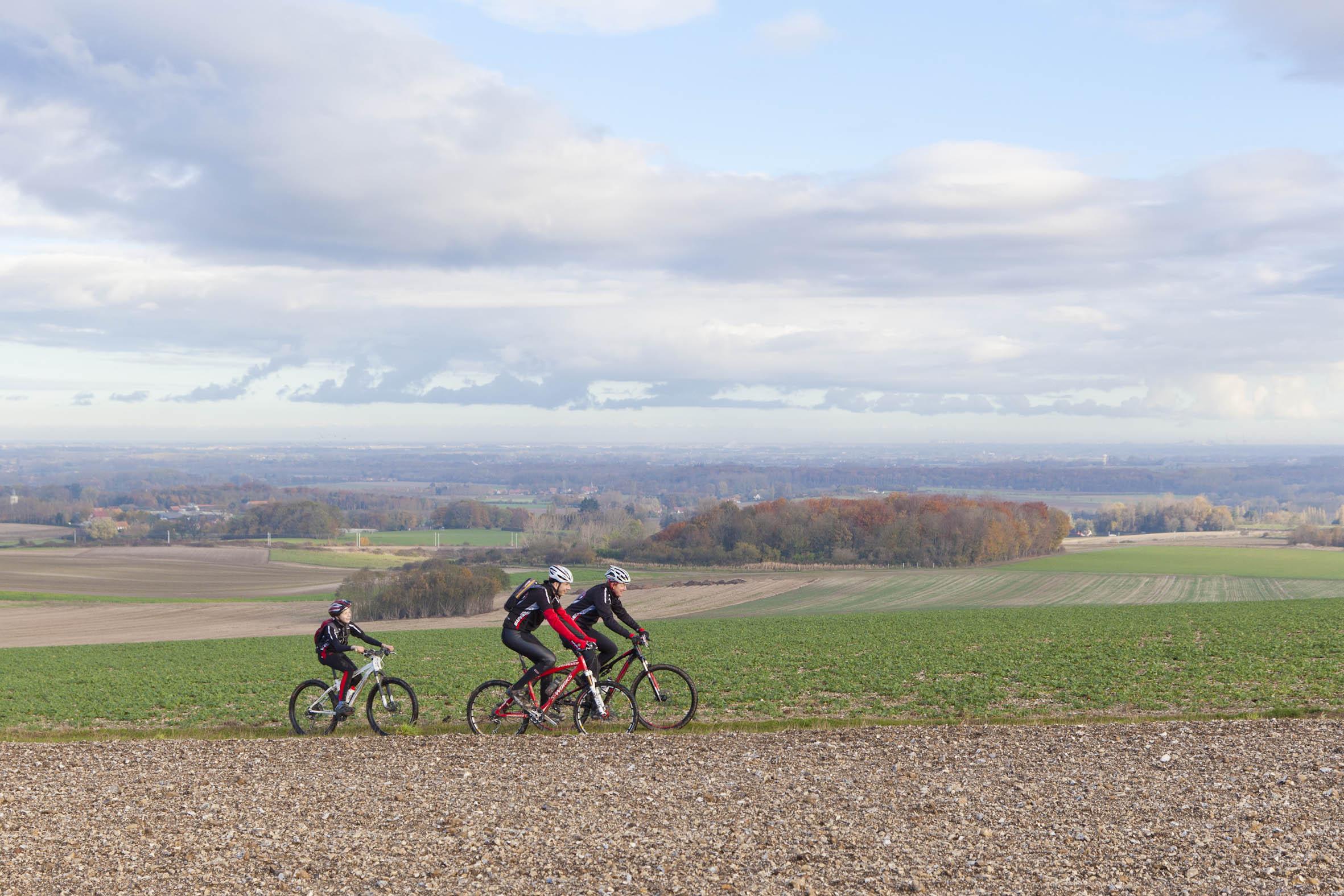 Sortie forêt de Tournehem. 11 Novembre 2012.